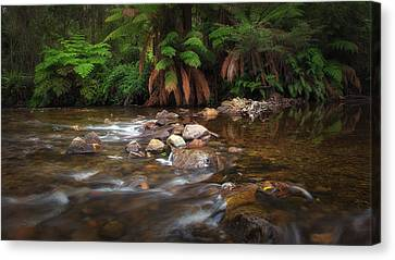 Canvas Print featuring the photograph Acheron River by Tim Nichols