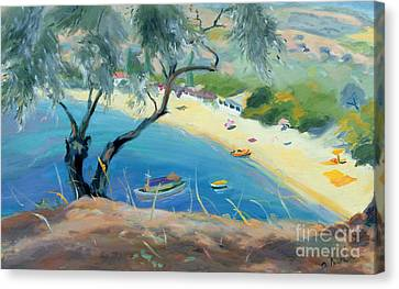 Aegean Canvas Print - Achladies Bay - Skiathos - Greece by Anne Durham