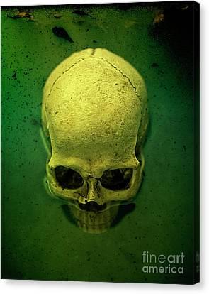 Acid Pool Skull Canvas Print by Edward Fielding