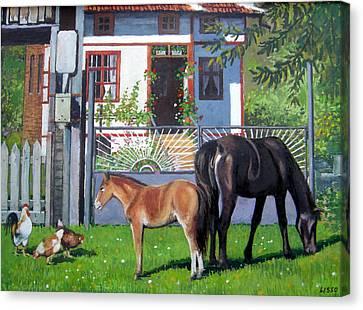 across Bulgaria 7 Canvas Print by Stoian Pavlov