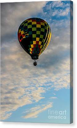 Balloon Festival Canvas Print - Across The Sky by Victory  Designs