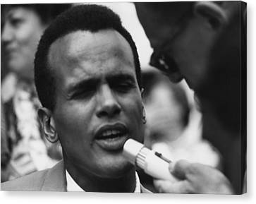 Actor And Singer Harry Belafonte Canvas Print by Everett