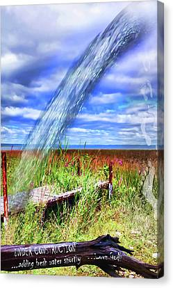 Adding Fresh Water Shortly Canvas Print by Cathy  Beharriell