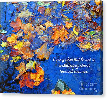 Canvas Print featuring the photograph Adironack Laughing Water Charity by Diane E Berry