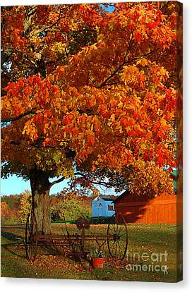 Canvas Print featuring the photograph Adirondack Autumn Color by Diane E Berry