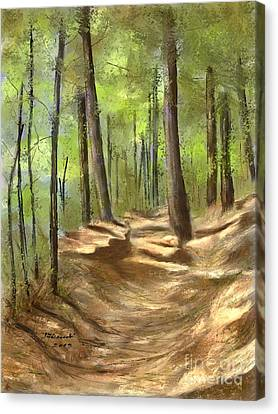 Adirondack Hiking Trails Canvas Print by Judy Filarecki