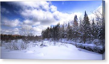 Adirondack Snowscape Canvas Print by David Patterson