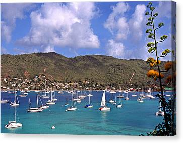 Admiralty Bay Canvas Print by Thomas R Fletcher