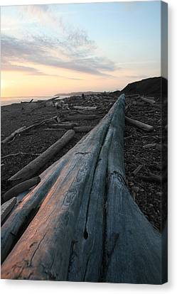 Whidbey Island Ferry Canvas Print - Admiralty Log by Dylan Punke