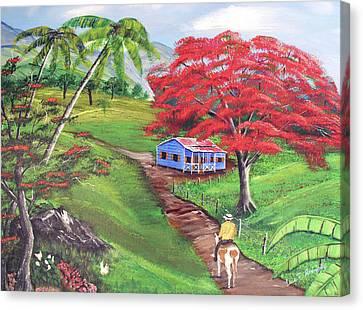 Admirando El Campo Canvas Print by Luis F Rodriguez