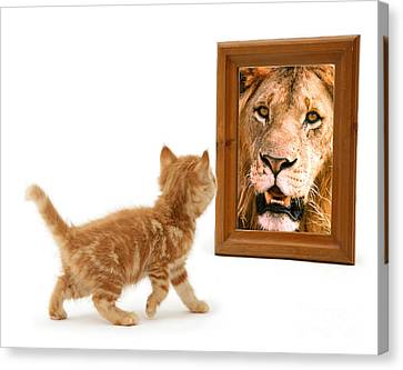 Admiring The Lion Within Canvas Print