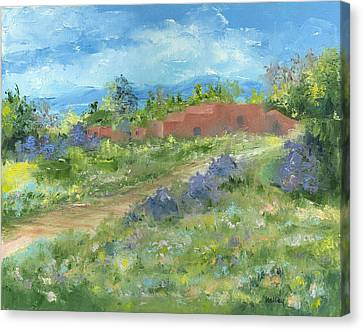 Adobe Trail Canvas Print