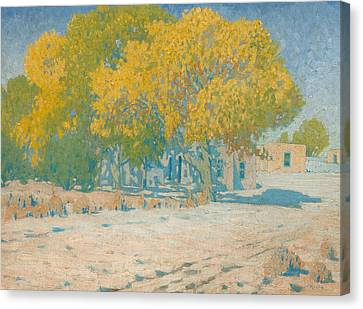 Adobes And Cottonwoods Canvas Print