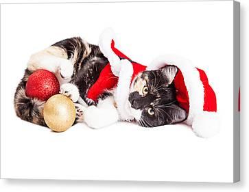 Santa Claus Canvas Print - Adorable Christmas Calico Santa Kitty by Susan Schmitz