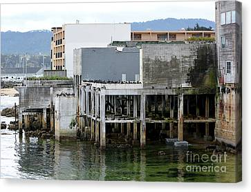 Canvas Print featuring the photograph Aeneas Ruins In Springtime At Cannery Row by Susan Wiedmann