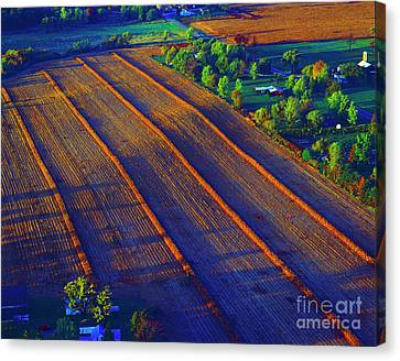 Aerial Farm Field Harvested At Sunset Canvas Print