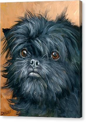 Affenpinscher Portrait Canvas Print by Dottie Dracos