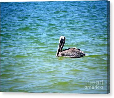 Canvas Print featuring the photograph Afloat by Terri Mills