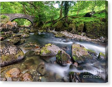 Afon Lledr Bridge Canvas Print