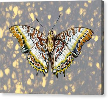 African Butterfly Canvas Print by Mindy Lighthipe