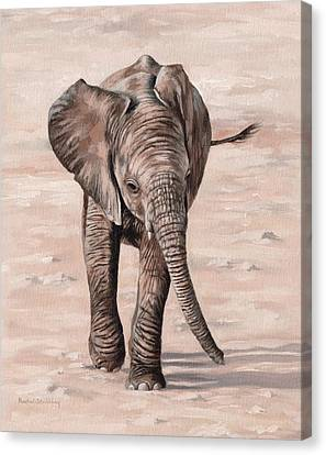Wet On Wet Canvas Print - African Elephant Calf Painting by Rachel Stribbling