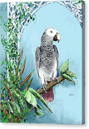 African Grey Parrot Canvas Print by Arline Wagner