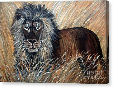 African Lion 2 Canvas Print