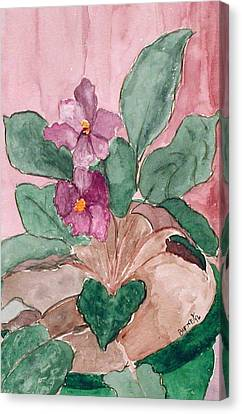 African Violet Canvas Print by Margie  Byrne
