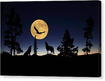 After Sunset Canvas Print by Shane Bechler