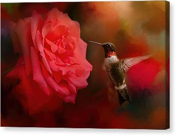 Humming Birds Canvas Print - After The Big Rose by Jai Johnson