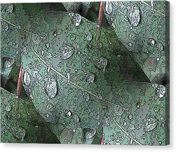 After The Rain 4 Canvas Print by Tim Allen