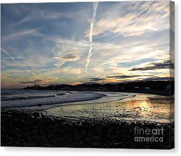 After The Storm In 2016 Canvas Print