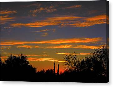 Canvas Print featuring the photograph Afterglow Silhouette H49 by Mark Myhaver