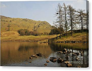 Afternoon At Blea Tarn Canvas Print by Nichola Denny