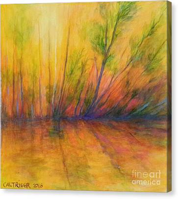 Afternoon Glow  Canvas Print by Alison Caltrider