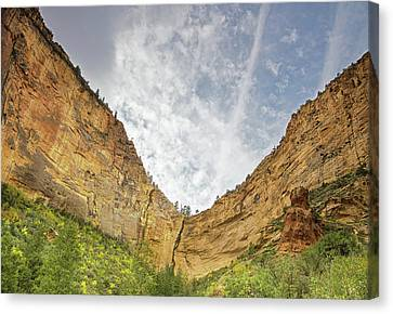 Afternoon In Boynton Canyon Canvas Print by Kunal Mehra