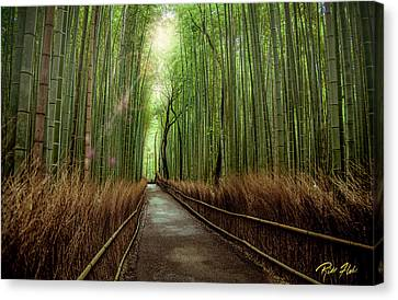Afternoon In The Bamboo Canvas Print