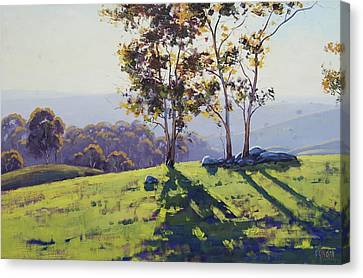 Afternoon Light Cuthill Road Canvas Print