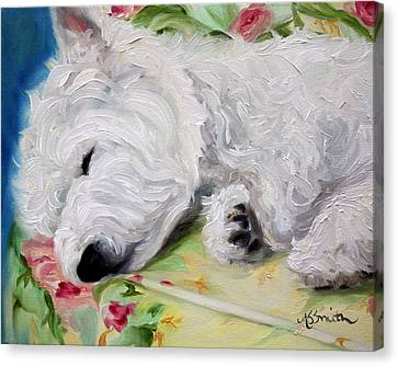 Afternoon Nap Canvas Print by Mary Sparrow