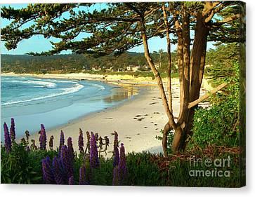 Big Sur Canvas Print - Afternoon On Carmel Beach by Charlene Mitchell