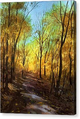 Afternoon Road Canvas Print by Sergey Zhiboedov