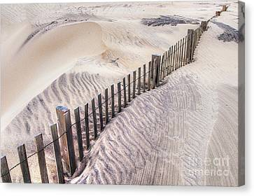 Against The Wind - Outer Banks Canvas Print