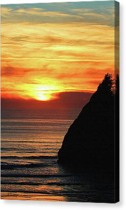 Agate Beach Oregon Canvas Print by Tom Janca