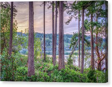 Agate Passage View Canvas Print by Spencer McDonald