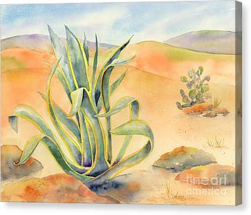 Agave In Borrego Canvas Print by Amy Kirkpatrick