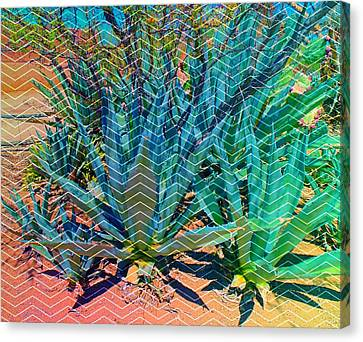 Michelle Canvas Print - Agave by Michelle Dallocchio