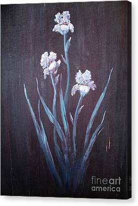 Aged Iris Canvas Print by The Stone Age