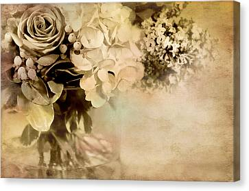 Ageless Canvas Print by Diana Angstadt