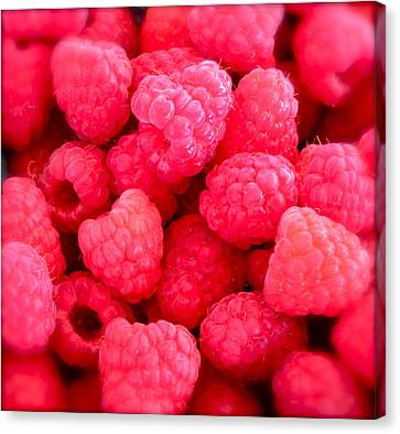 Agenda For Today ... Raspberry Jam Canvas Print by Gwyn Newcombe