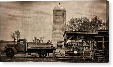 Aggie's Farm Stand Canvas Print by Louise Reeves